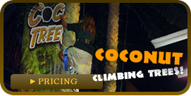 Coconut Climbing Trees!